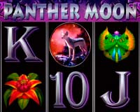 Аппарат Panther Moon